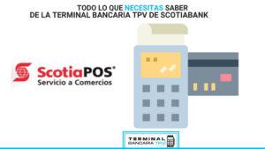 terminal punto de venta Scotiabank